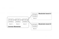 Bitcoin Cash hardforks