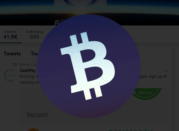 Bitcoin Cash cena