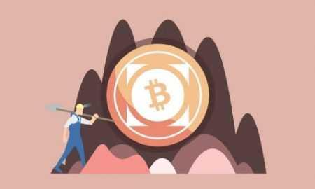 Ledger atjaunots Bitcoin Cash atbalsts pēc monētas hardfork