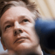 WikiLeaks apsūdz Kreigu Raitu melos