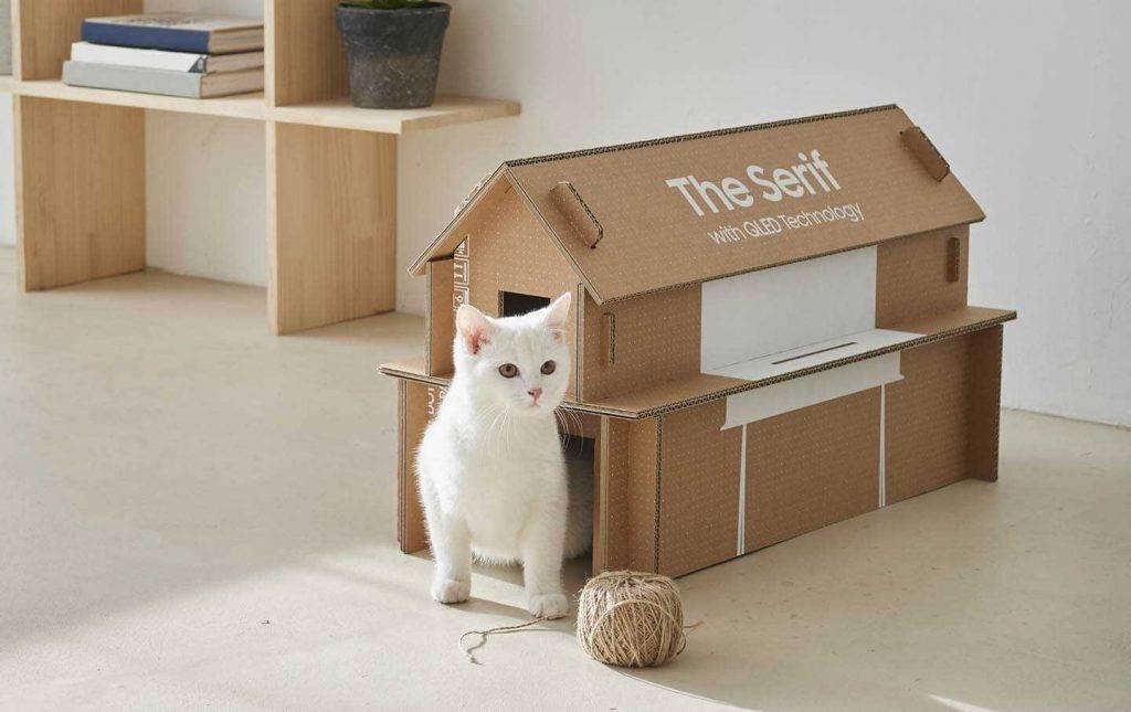 Samsung televizoru kastes pārvēršas par kaķu mājām