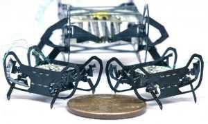 Robots tarakāns HAMR-JR no Hārvardas universitātes