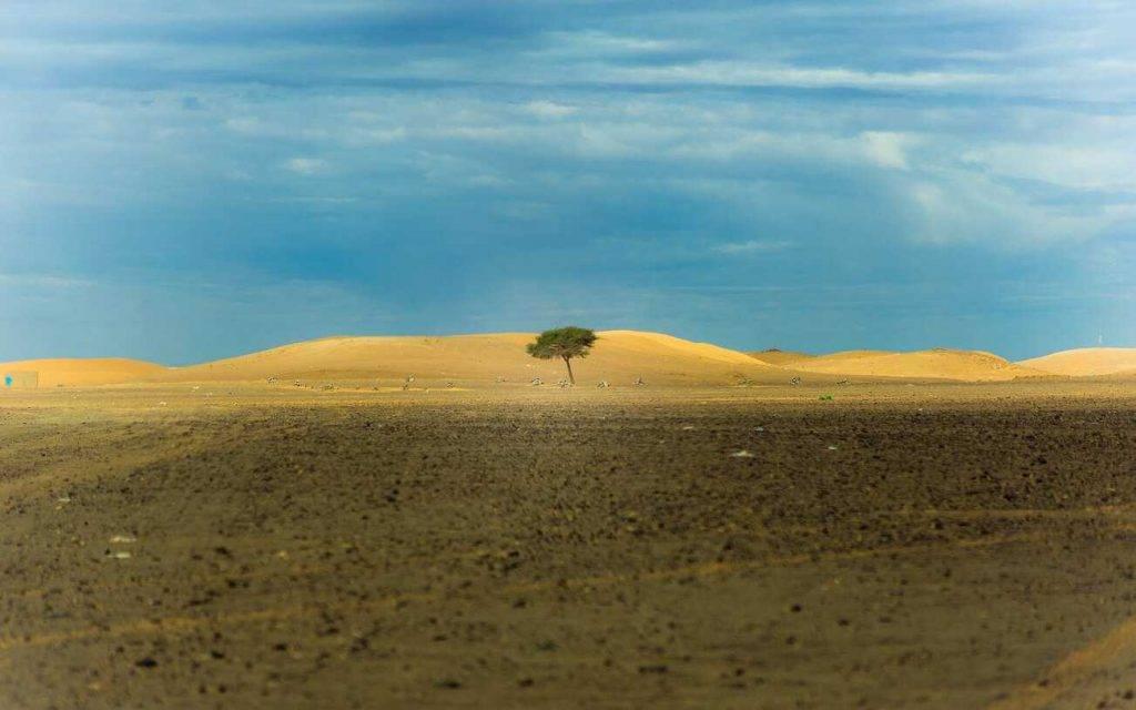 Klimats uz zemes