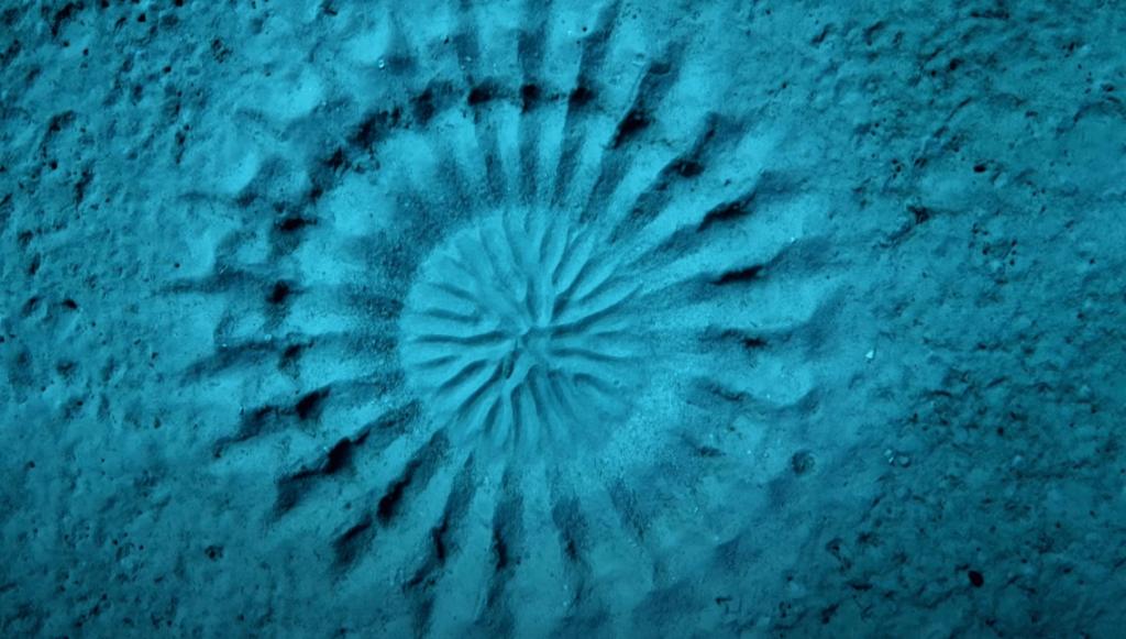 Mistiskie apļi okeanā