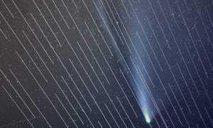 Starlin Sateliti