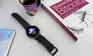 Viedpulksteņa Huawei Watch GT 2 Pro apskats