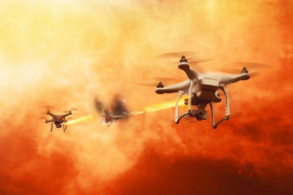 Droni lapseņu iznīcinātāji