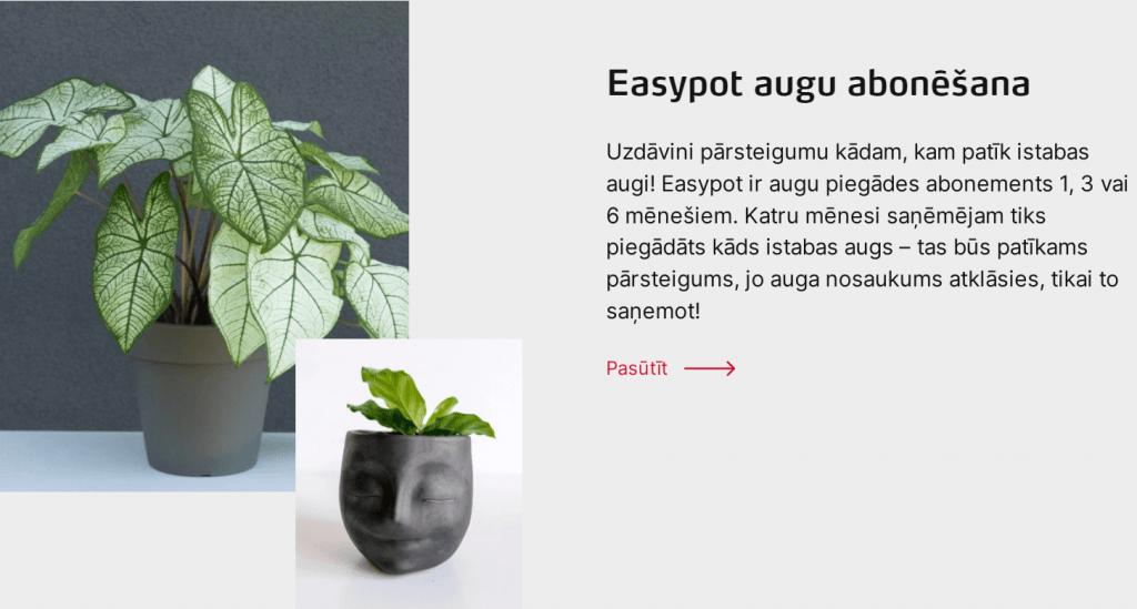 Dāvana Easypot augu abonēšana