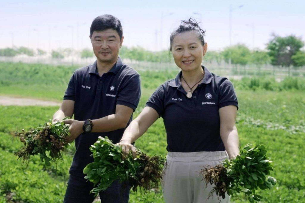 Starp akumulatoriem un elektroauto BMW Ķīnā audzē zemesriekstus