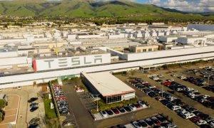 Tesla akcijas